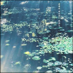 岩清水放生池