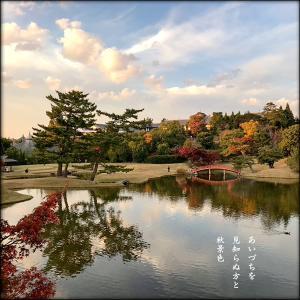 大乗院庭園秋景色