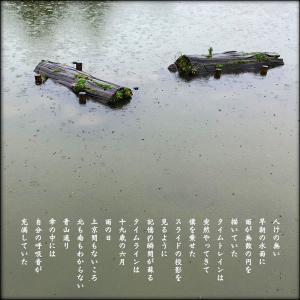 タイムトレイン_しとしと雨