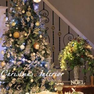 華やかなクリスマスとレッスンの裏話し(笑)♥