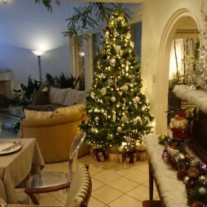 ご案内していましたクリスマスパーティー満席になりました♥有り難うございます!