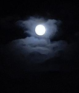 兵庫県K様から昨夜の満月の写メ