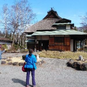 小津の散歩道