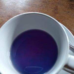 ルアンパバーン、ビエンチャン、バンコクの旅−61、ビエンチャン、ブルーのお茶って?