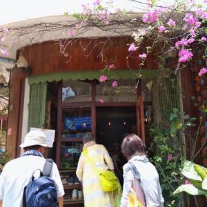 ルアンパバーン、ビエンチャン、バンコクの旅−62、ビエンチャン、「cafe ango」へ全員集合。