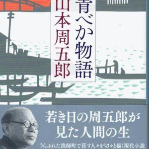 最近読んだ本、「青べか物語」、「山海記」。