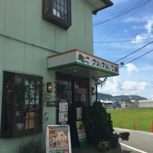 和歌山、岩出、インド料理「クシュクシュ岩出店」でランチ。