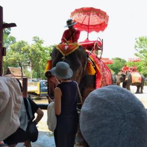 ルアンパバーン、ビエンチャン、バンコクの旅−75、アユタヤ、象に乗る。