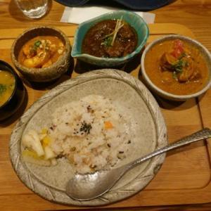 奈良、菖蒲池、「プラーナ」、絶品の全部盛りカレー。