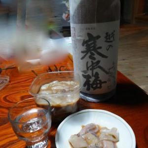 九度山暮らしのある日、手術後8ヶ月目に入った。−19、新鮮なイカの塩辛には日本酒が体に良さそうだ。
