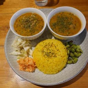 大阪、本町、「ディッシュカリー&レリッシュ (Dish curry&relish」のカレーランチ。
