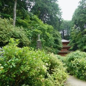 時々、奈良遊、岩船寺、浄瑠璃寺、当尾の里あたりを廻る−03、ほろ酔い気分で岩船寺へ。