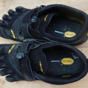 九度山暮らしのある日、手術後1年目へ、或いはコロナ怖生活−43、5本指の靴を買った。