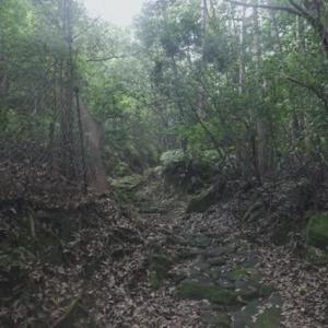 熊野古道の旅、中辺路をちょろっと。−14,やっと湯の峰温泉。