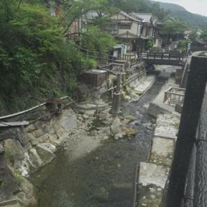 熊野古道の旅、中辺路をちょろっと。−15,湯の峰温泉から本宮大社に向かう。