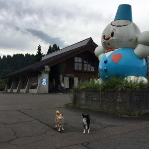 旅する柴犬 キャンピングカーで道の駅巡り 1 of Day5