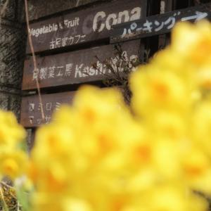 Vegetable&Fruit 古民家カフェ Conaya