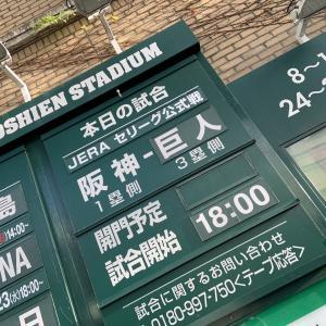 10年以上ぶりの阪神 - 巨人観戦