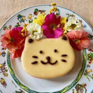 猫のケーキ