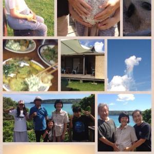 沖縄で活動再開します!