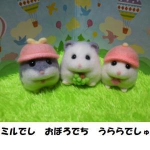 羊毛お座りハムスター【おぼろ君】