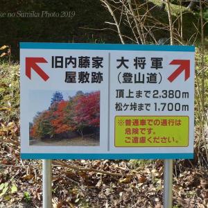 旧内藤家屋敷跡の紅葉