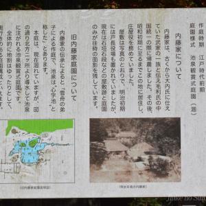 旧内藤家屋敷跡の紅葉 2020.11.08