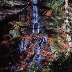 天神の滝 2020.11.21