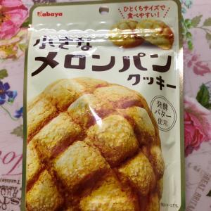 【お買得】カバヤ 小さなメロンパンクッキー 発酵バター使用