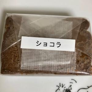 【モニター】チーズ家クヴェレ チーズに拘ったチーズケーキ(ショコラ)