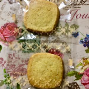 【季節限定】ステラおばさんのクッキー ソルティレモン