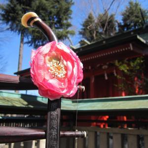 武蔵國一之宮小野神社@天麻那舞御奉納にて二胡演奏ありがとうございました