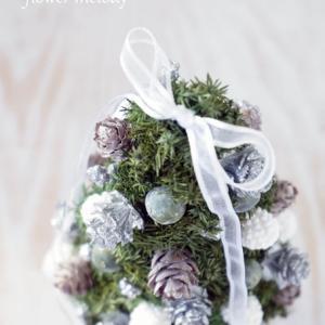白樺とヒムロスギのクリスマスツリー。