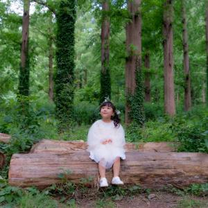 森の小さな妖精さん