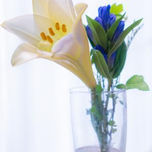 お花の定期便bloomeeのこと