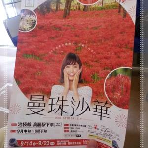 ☆真っ赤な花のじゅうたん☆巾着田♪*:..。o○☆