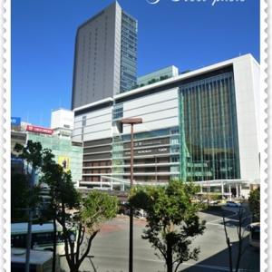☆新しいカメラで横浜散歩♪*:..。o○☆
