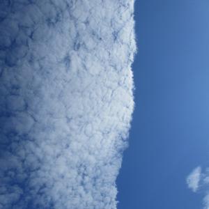 縦に屹り立つような雲の形状を仰ぎ見た
