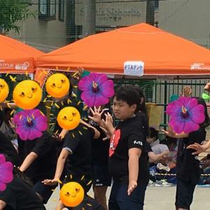 『小学校最後の運動会』