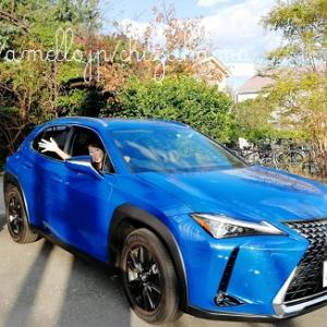 【プチトリップ】LEXUS SUVで古都鎌倉×湘南『LEXUS CRAFTED』特別試乗体験レポ