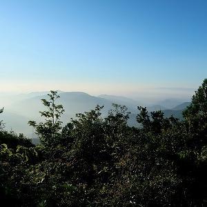 「サギソウ」咲く西光寺山