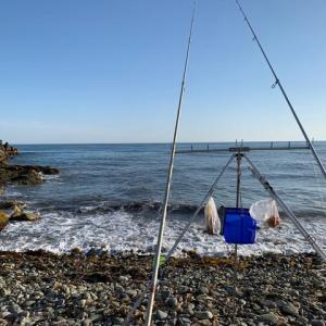 春の太平洋で14時間耐久釣行!