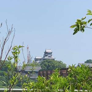 サクラマチ熊本へ