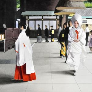 七月の花嫁