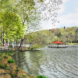 芽吹き時の公園