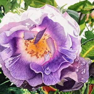 薔薇(ブルー・フォー・ユー)