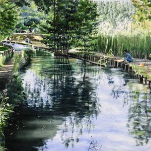 夕暮れが訪れる水元公園