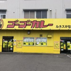 ゴーゴーカレー ルネスかなざわ店/チキンカツカレー中 (850円)