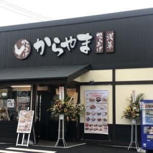 からやま 成田店/からやま弁当梅 (690円)税別