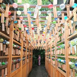 【募集中】8月22日日曜日水瓶座満月の小江戸川越でご利益ザクザクなコラボお参りツアー☆